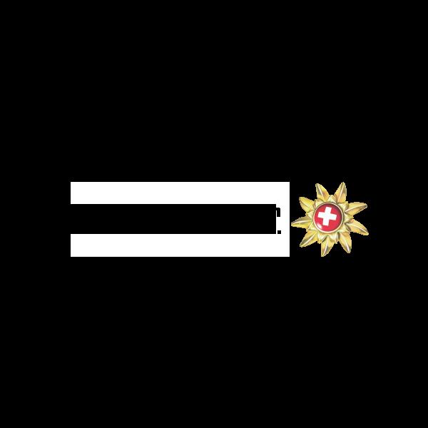 Messe Zürich Switzerland Convention & Incentive Bureau Logo
